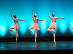 The Pointe Academy of Ballet