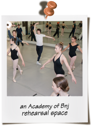 The Academy of Ballet New Jersey