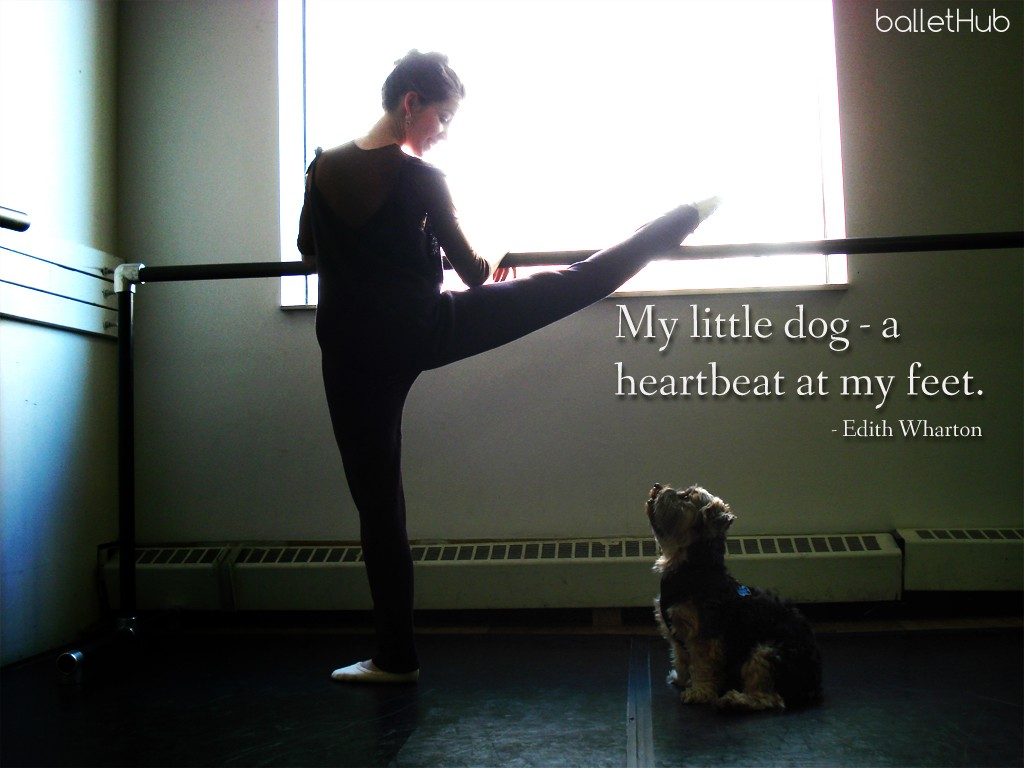 … a heartbeat at my feet. ballet quote