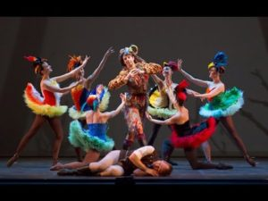 The Magic Flute Preview