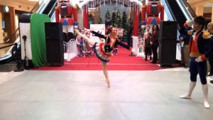 The Washington Ballet at Tysons Mall 2012