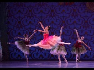 A special NUTCRACKER delivery for you!